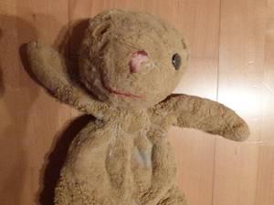 Bärenklinik besonders anspruchsvoll und erfolgreich
